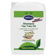 SHAMPOO COADIUVANTE ANTIP. CON TEA-TREE OIL 10 LT (Tanica)