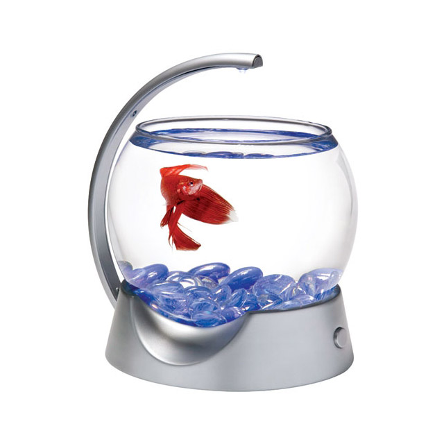 TETRA BETTA BOWL